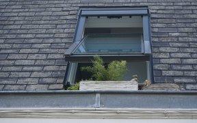 Isolation des combles et nettoyage de toiture