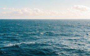 Collagène marin pur à boire